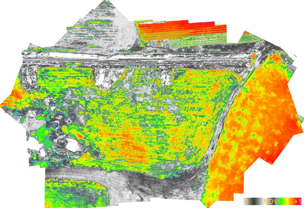 Agricoltura di precisione con drone mappa di vigore